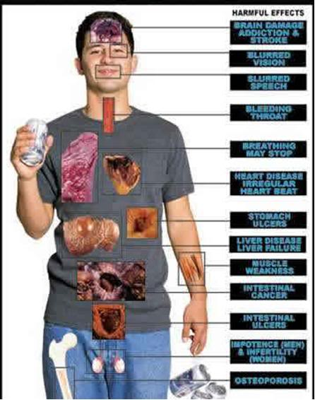 alcohol affects our body